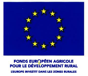 logo-fond-europeen